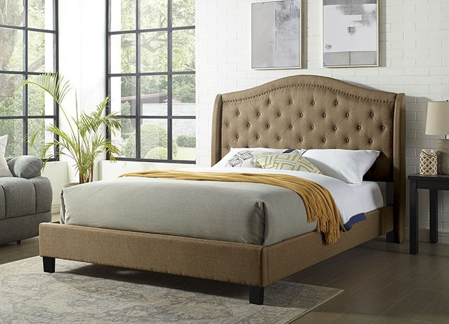 CM7160BR Rosdorf park carly brown padded and tufted queen bed set with nail head trim