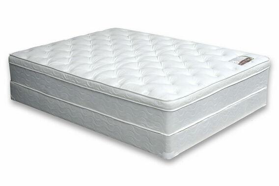 Dreamax birds of paradise 11 inch euro pillow top queen size mattress