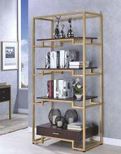 Acme 92787 Everly quinn wilbert yumia gold metal frame 4 tier book shelf